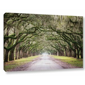 'Oak Trees with Spanish Moss in Savanna Georgia' by Cody York Photographic Print on Wrapped Canvas by Loon Peak