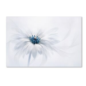 'Serenity' Photographic Print on Wrapped Canvas by Trademark Fine Art