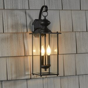 Amberley 2-Light Outdoor Wall lantern