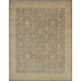 Mina H Woven Wool  Area Rug by Darby Home Co