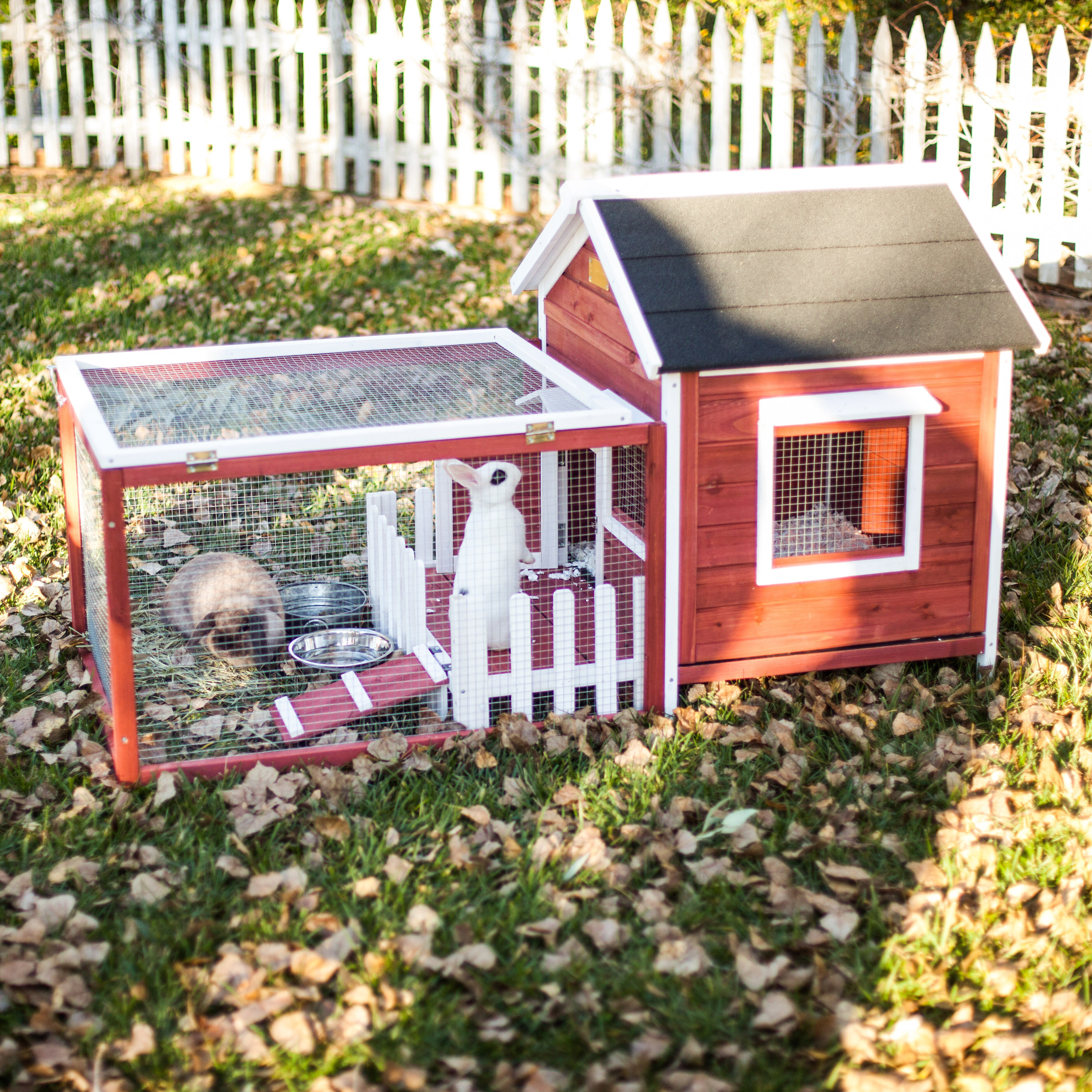 rabbit wood box solid hutch the includes style salt