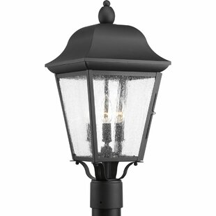Ephraim 3-Light Lantern Head By Darby Home Co Outdoor Lighting