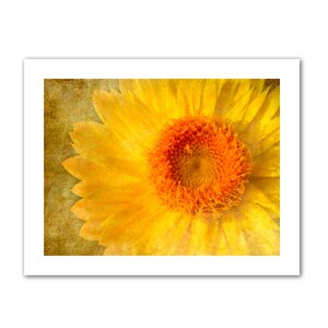 Flowers in Focus I' by Antonio Raggio Graphic Art on Rolled Canvas by ArtWall