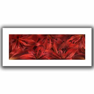 'Lily Landscape Red' Photographic Print on Rolled Canvas by Ebern Designs