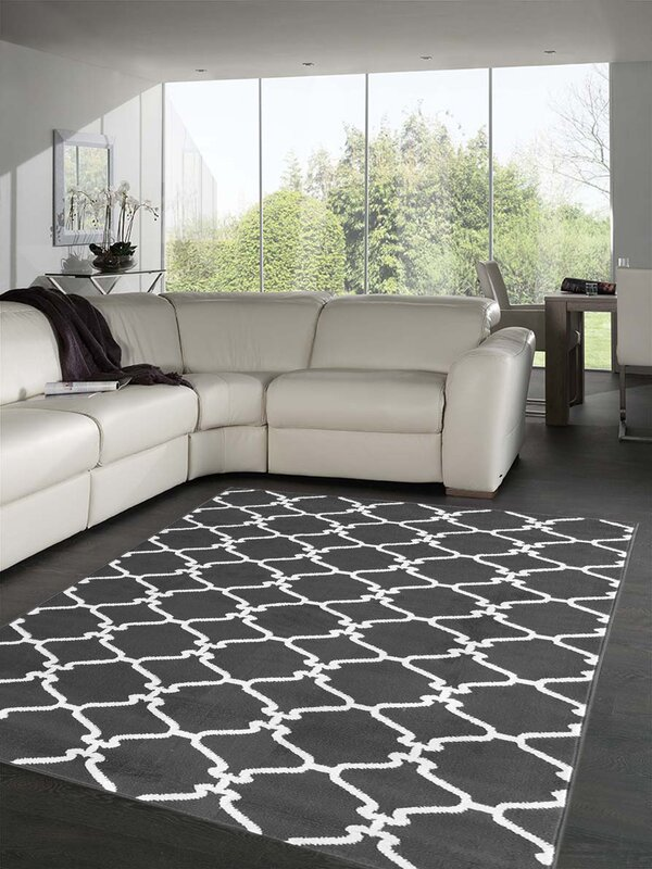 Sweet home stores clifton light gray area rug reviews for Rugs for dark floors