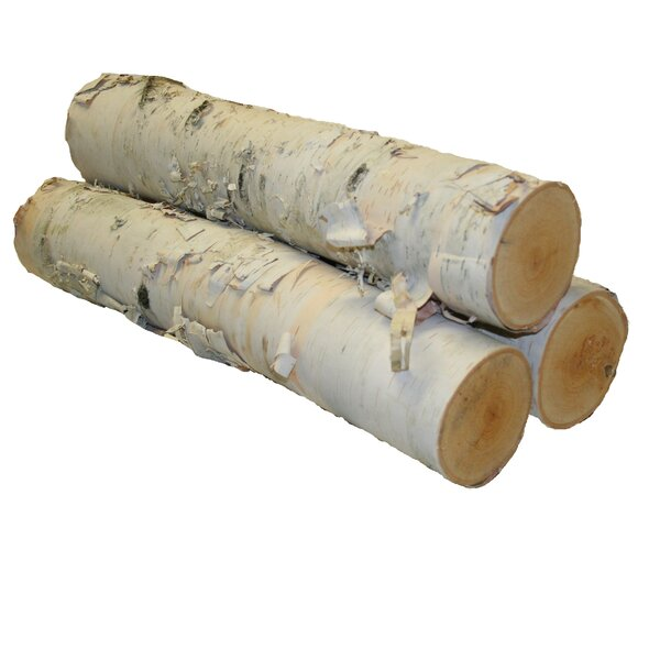 Coman Birch Logs (Set of 3) by Union Rustic