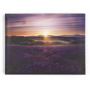 Lavendar Sunset Art Framed Photo Graphic Print on Canvas by Charlton Home