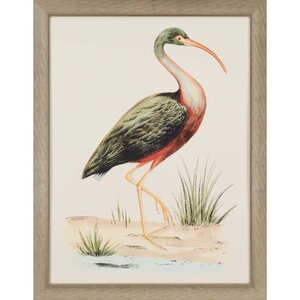 Water Bird I by Meyer Framed Painting Print by Paragon