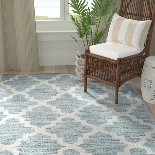 Eliana Hand-Woven Cotton Mint/Ivory Area Rug by Highland Dunes