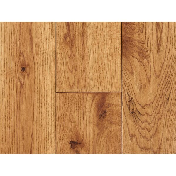 Orchard 4.75 Solid Oak Hardwood Flooring in Berry by Albero Valley