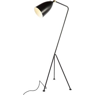 Modern tripod floor lamps save aloadofball Images