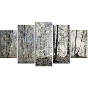 'Dark Morning in Forest Panorama' Photographic Print Multi-Piece Image on Canvas by Design Art