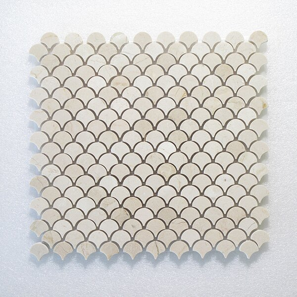 Petit Oyster Wall Polished 12 x 12 Natural Stone Mosaic Tile