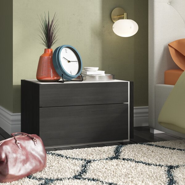 Cullerton 2 Drawer Nightstand by Brayden Studio