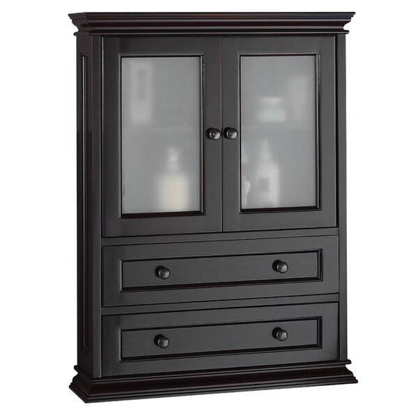 Hyde 23.38 W x 31 H Wall Mounted Cabinet by Hazelwood Home