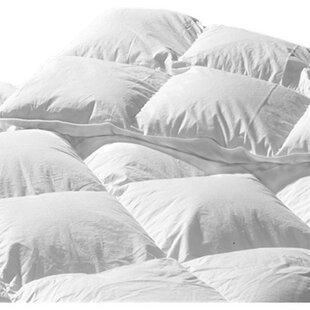 Brittany Heavyweight Down Comforter By Highland Feather
