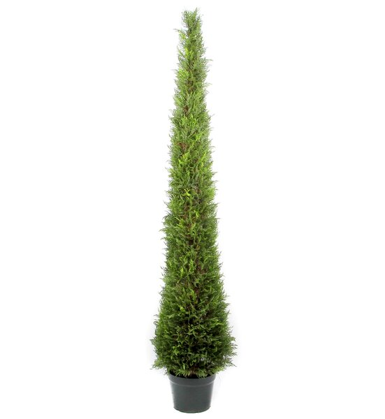 Artificial Cypress Leave Tower Cone Topiary in Pot by Admired by Nature