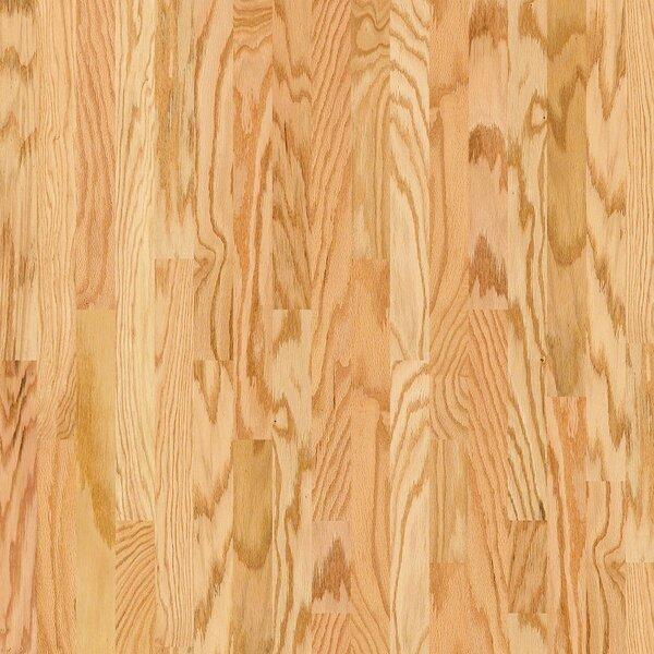 Lakeland 3-1/2 Engineered Red Oak Hardwood Flooring in Wiggins by Shaw Floors