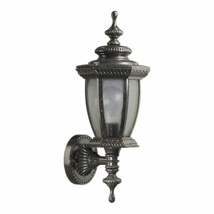 Winn 1-Light Outdoor Sconce By Fleur De Lis Living Outdoor Lighting