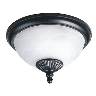 Shop for Atisha 2-Light Outdoor Flush Mount By Red Barrel Studio