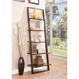 Affordable Aldo Ladder Bookcase By Langley Street