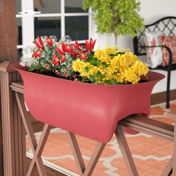 Feinstein Deck Plastic Rail Planter by Charlton Home