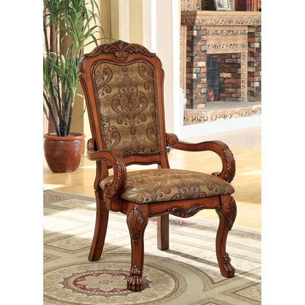 Evangeline Arm Chair (Set of 2) by Hokku Designs