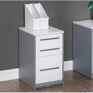 Rivas 2 Drawer Vertical Filing Cabinet
