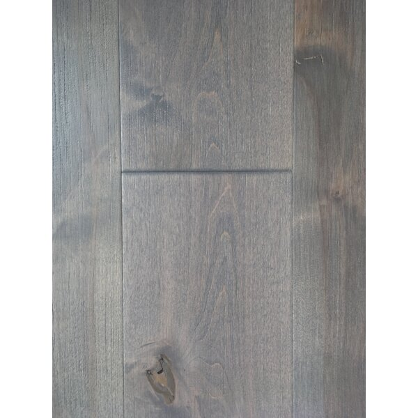 Glacier Betula 7.5 Engineered Hardwood Flooring in Gray by Dekorman