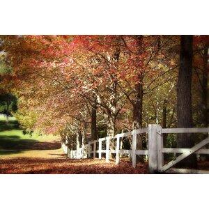 Autumn Moods Photographic Print by Prestige Art Studios