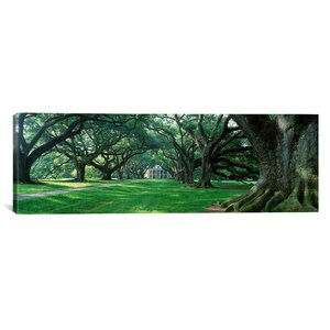 'Louisiana, New Orleans, Oak Alley Plantation, Plantation Home through Alley of Oak Trees' Photographic Print on Canvas by East Urban Home