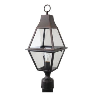 Fiqueroa 1-Light Lantern Head By Darby Home Co Outdoor Lighting