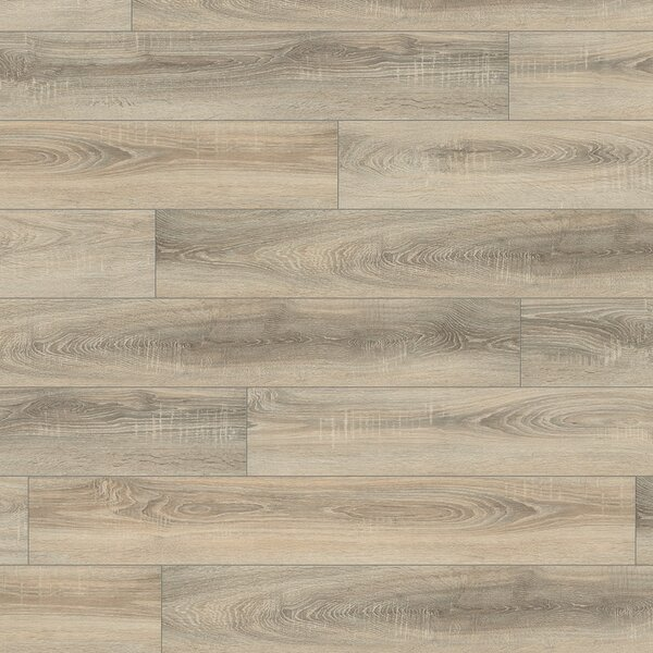 V4 7 x 51 x 8mm Oak Laminate Flooring in Gray by ELESGO Floor USA