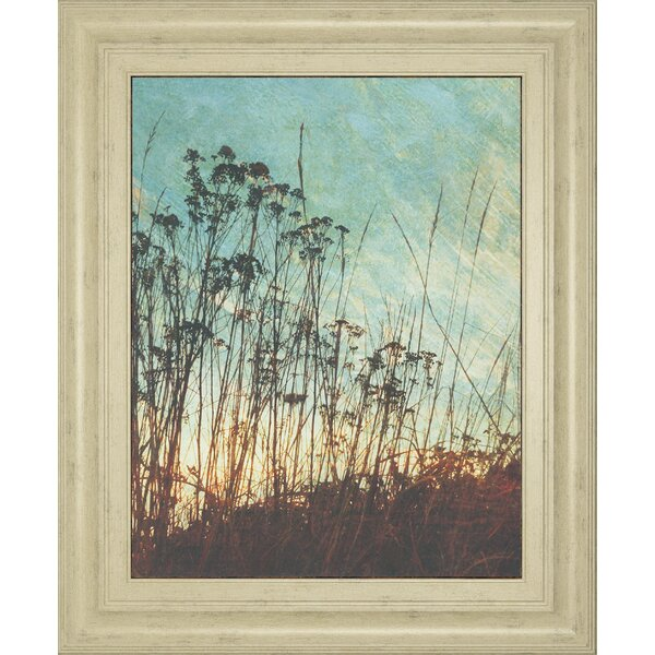 Wild Grass by Amy Melious Framed Painting Print by Classy Art Wholesalers