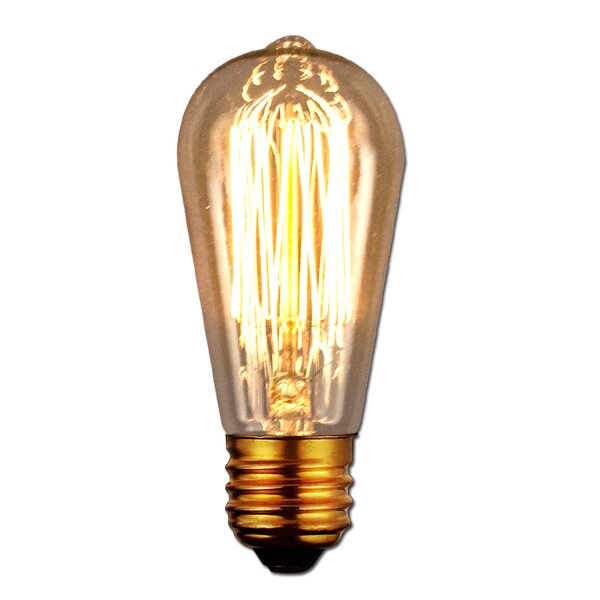 40W Antique Light Bulb by String Light Company