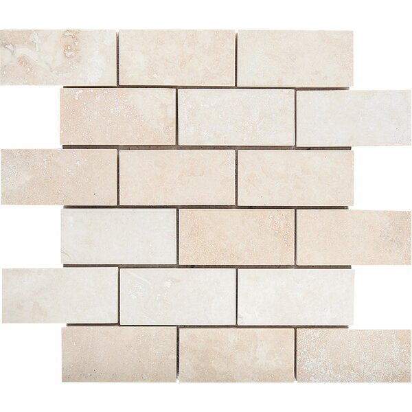 2 x 4 Stone Mosaic Tile in Ivory by Parvatile