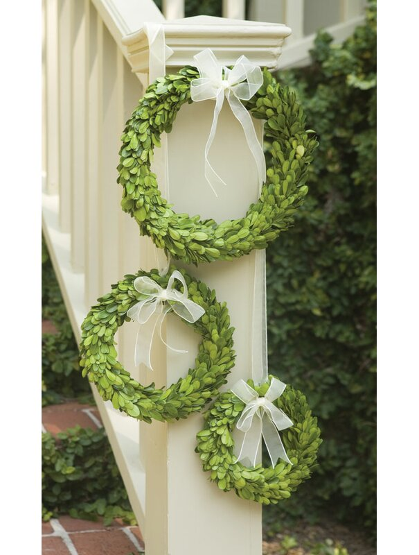Preserved Greens 3 Piece Boxwood Wreath Set