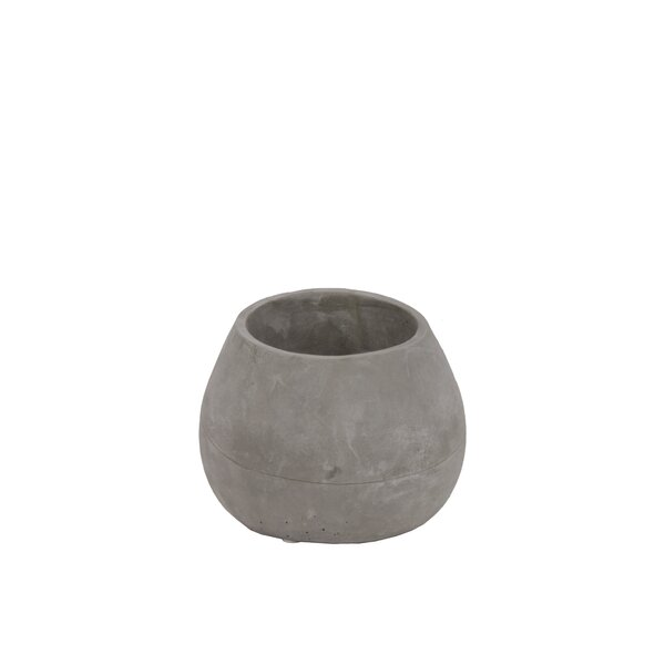 Craney Short Bellied Round Flower Concrete Pot Planter by 17 Stories