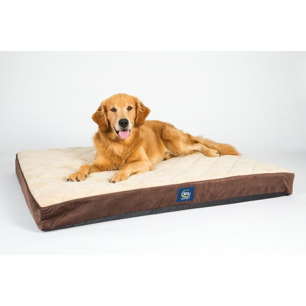 Ortho Pillowtop Pet Bed by Serta