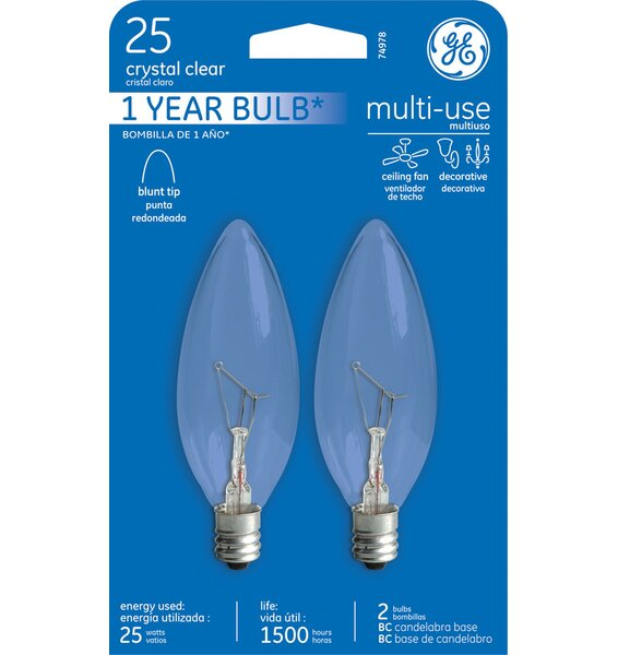 25W Frosted 120-Volt (2500K) Incandescent Light Bulb by GE