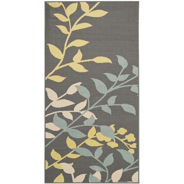 Hampton Dark Grey Outdoor Area Rug by Safavieh