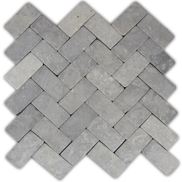 Desna 2 x 4 Natural Stone Mosaic Tile in Light Gray by CNK Tile