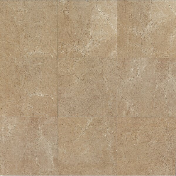 El Dorado 24 x 24 Porcelain Field Tile in Starfish Polished by Grayson Martin
