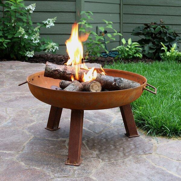 Tidworth Bowl Cast Iron Wood Burning Fire Pit By Williston Forge