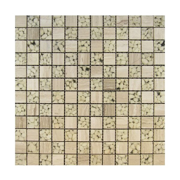 1 x 1 Glass Mosaic Tile in Beige by QDI Surfaces