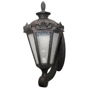 Best Choices Petrey 3-Light Outdoor Sconce By Alcott Hill
