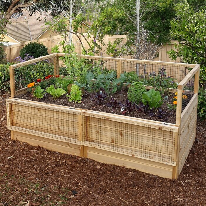 6 ft x 3 ft Cedar Raised Garden Bed Raised Planter Bo Along Fence Backyard Ideas Las Vegas on