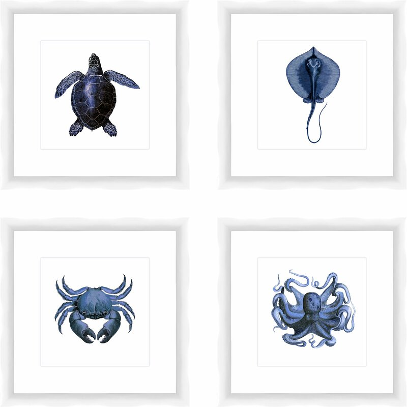 Highland Dunes Sea Creatures By Ptm Images 4 Piece Picture Frame Graphic Art Print Set On Paper Reviews Wayfair