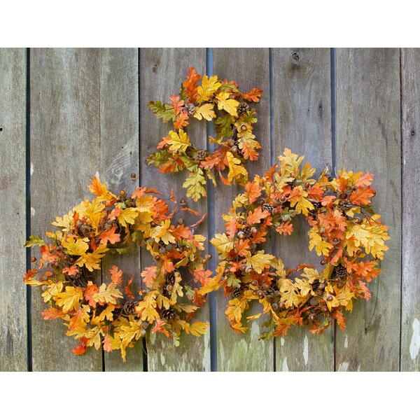20 Oak Wreath by Darby Home Co