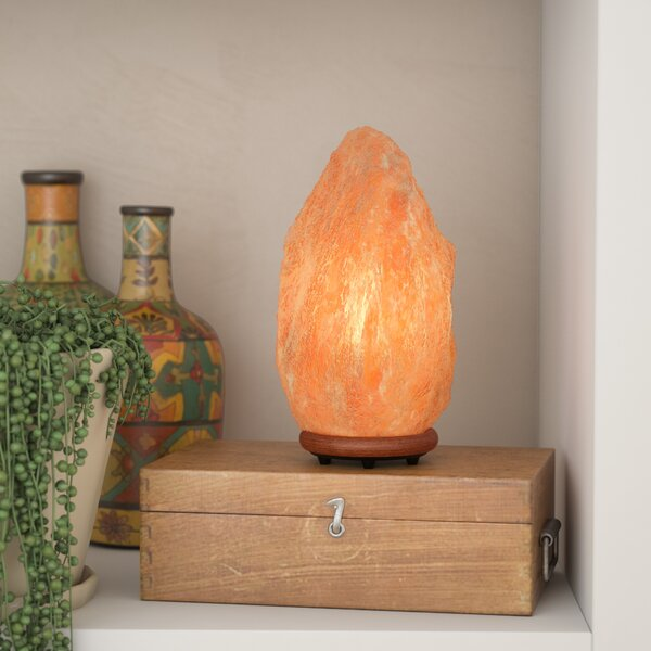 Jayvion 9.25 Himalayan Salt Lamp by World Menagerie